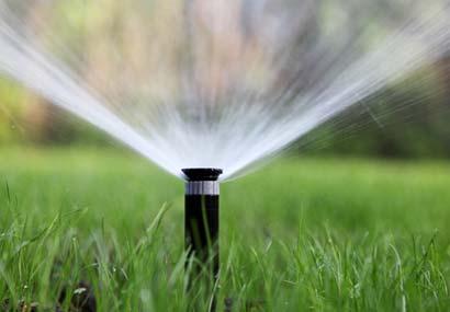 Rasensprenger bewässert einen Rasen
